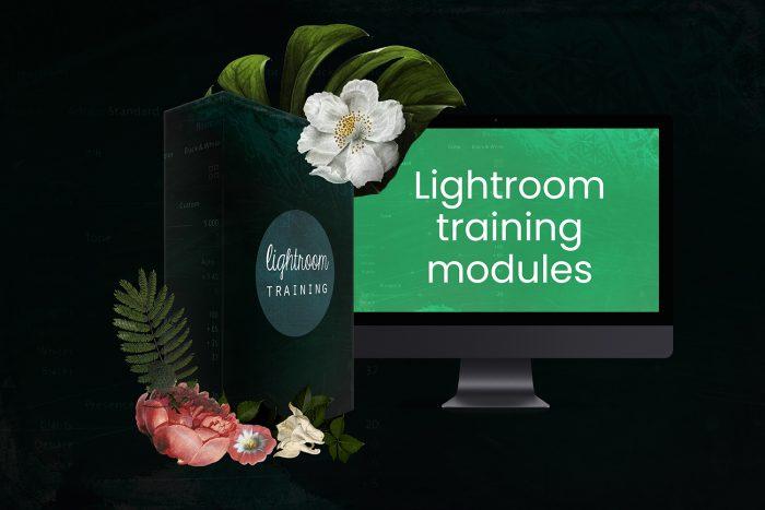 Lightroom training modules